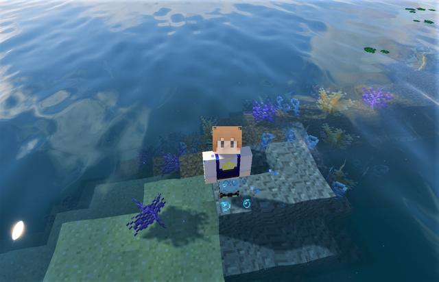 サンゴ2.png