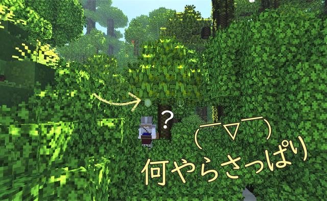 ドラゴンフルーツの木1.png