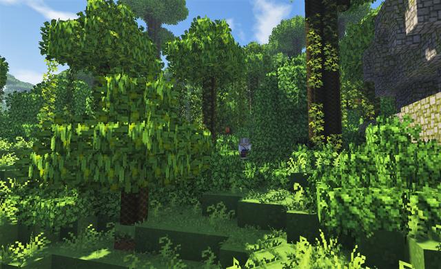 レモンの木4 森の深くへ.png